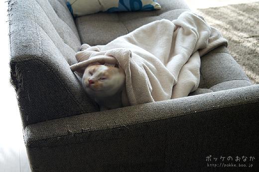 んーーーよく寝た
