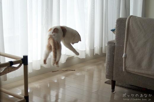 左足を上げて