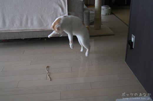 左足が地面に着く前に右足を上げればッ