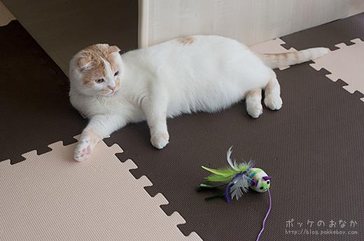 ハァ・・猫だからってねずみのおもちゃとか・・